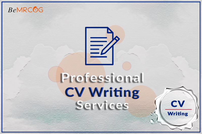 Professional CV Writing Services logo