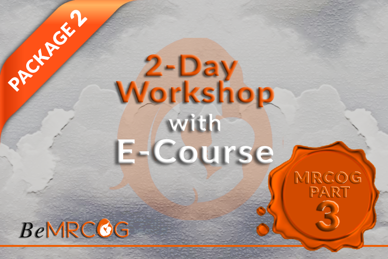 Package 1 (2-Day workshop with E-Course) logo